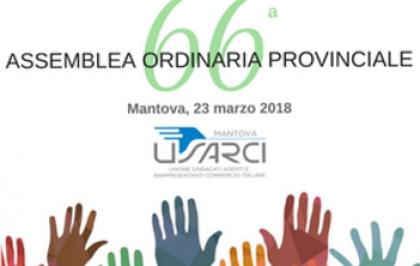 Mantova, assemblea
